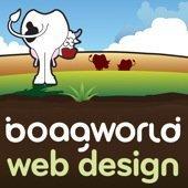 boagworld art